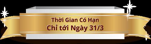 Thời Gian Có Hạn, Chỉ Tới Mgày 31/3