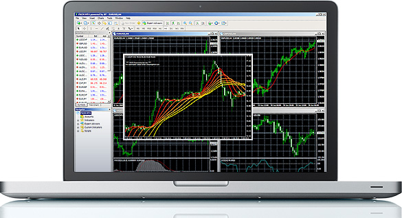Metatrader not definition update working live
